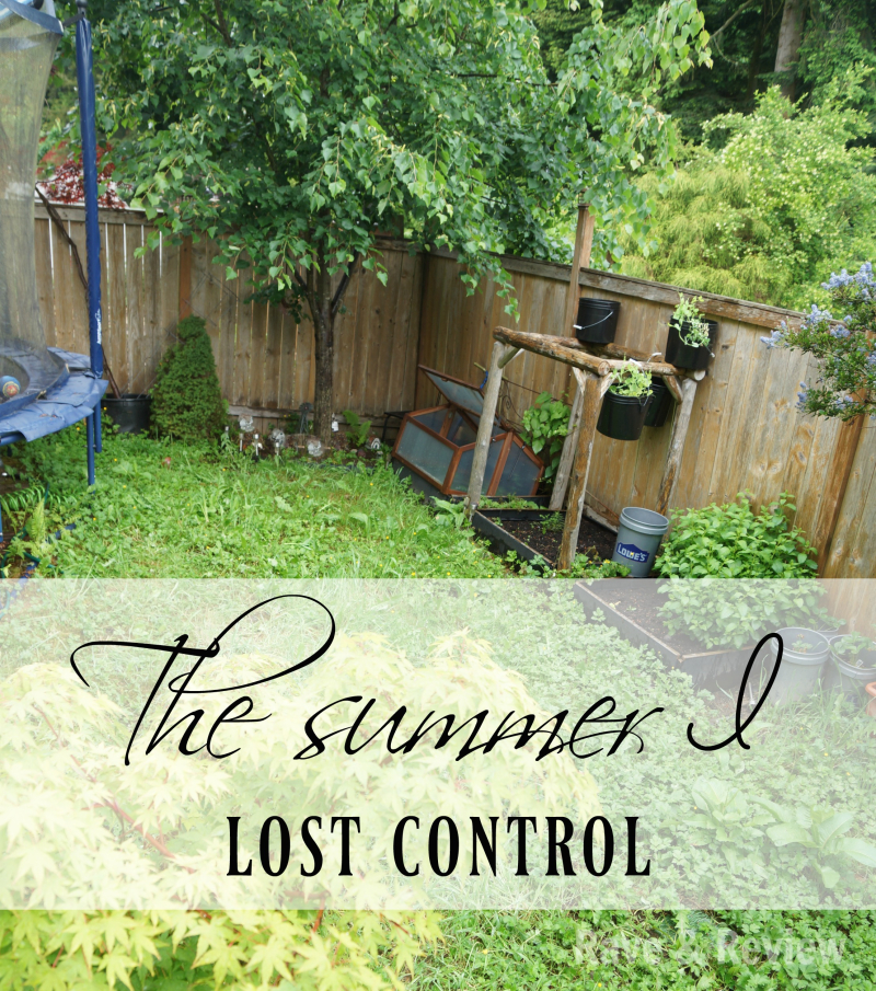 The summer I lost control logo